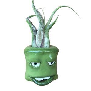 Handmade Airplant holder grumpy green